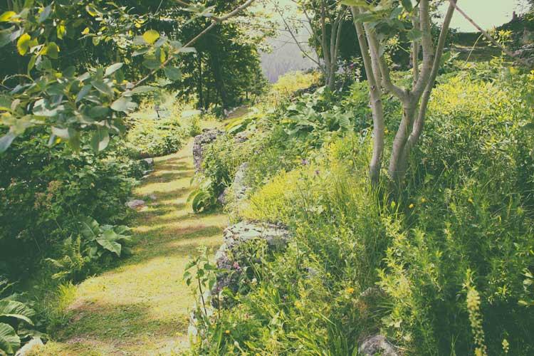 02-giardino-alpino