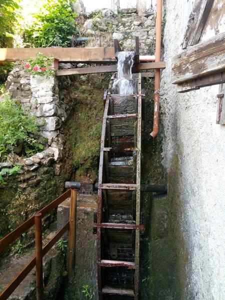 Escursione guidata all'affascinante Valle dei Mulinihttps://www.museodilusiana.it/wp-login.php?action=logout&_wpnonce=f280271109